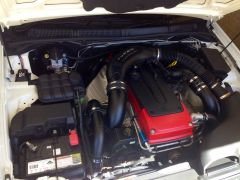 Engine bay blackouts