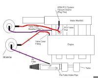 Catch Can Setup - Engine Workshop - Ford XR6 Turbo com